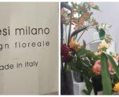 Fiori e composizioni  Milano   antèsi design floreale